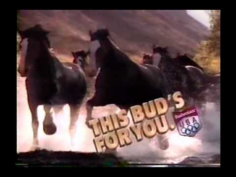 1988 Budweiser Beer Clydesdale Commercial