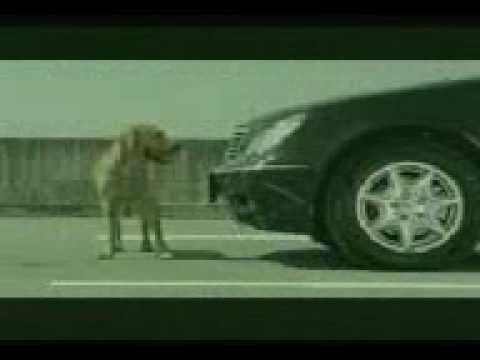 Banned Commercials - Bridgestone - Dog's Unfaithful Girlfriend