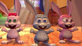 Ronda de los Conejos  Canciones de la Granja 2