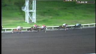 RACE 1 JAG ALSKAR DIG 11/29/2014