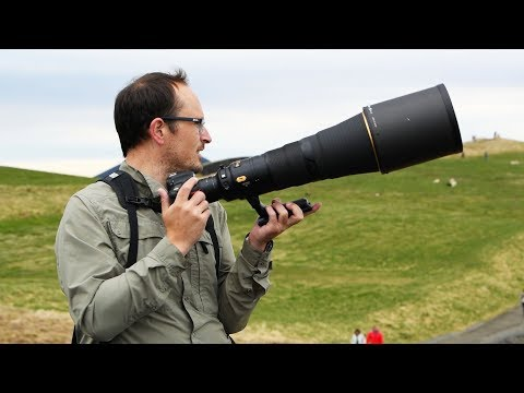 Nikon's BEST Ultra Telephoto Prime lens - FIELD TESTED