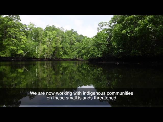 Save Small Island 2015