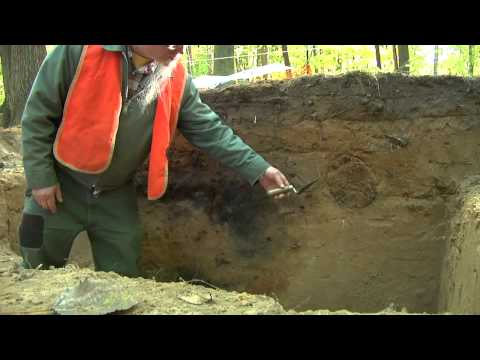 Video: M231 ARCHAEOLOGY