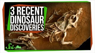 3 Mind-Blowing Recent Dinosaur Discoveries by  SciShow