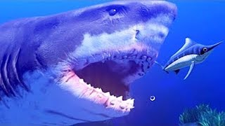 Video MANGÉ PAR UN IMMENSE REQUIN ! | Feed and Grow: Fish ! MP3, 3GP, MP4, WEBM, AVI, FLV September 2017