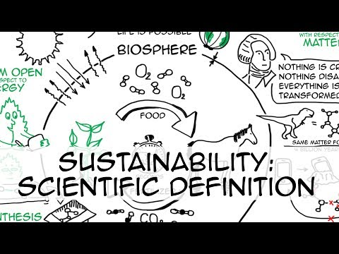 Sustainability: simple definition (whiteboard animation)