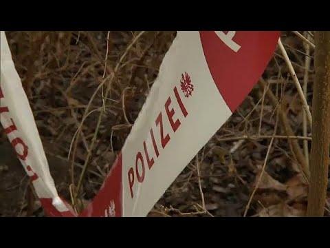 Wien: Messerstecher gesteht, vier Menschen verletzt z ...