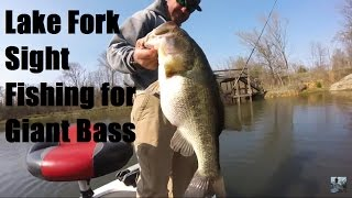 Video Bass Fishing Lake Fork: Sight Fishing for Giant Bass MP3, 3GP, MP4, WEBM, AVI, FLV Januari 2019