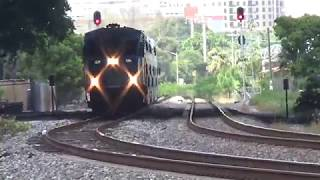Southbound Tri-Rail Passenger Train with Loco #826 [BL36PH] is pulling three passenger cars.