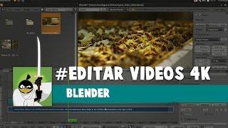 Blender Edição 4K
