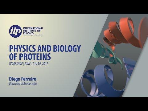 Frustration in proteins (minicourse) part 4 - Diego Ferreiro