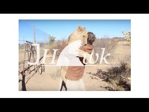Sahibine sarılan aslan