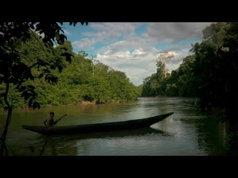 survivalintl - A plane flies over an uncontacted tribe. What would have happened if it had landed? A short documentary about the effects of first contact on the tribes of B...