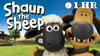 Video Shaun the Sheep - Season 2 - Episodes 21-30 [1HOUR] MP3, 3GP, MP4, WEBM, AVI, FLV Juni 2018