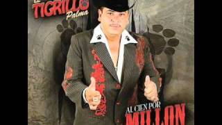 Download Lagu El 24-Tigrillo Palma Mp3