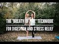 "Kapalabhati: The ""Breath Of Fire"" Technique For Digestion And Stress Relief"