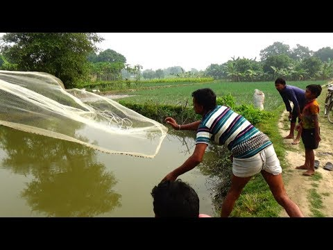 Video Net Fishing | Catching Fish and Crabs With Cast Net | Net Fishing in the village (Part-50) download in MP3, 3GP, MP4, WEBM, AVI, FLV January 2017