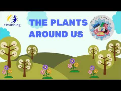 ETwinning Project The Plants Around Us  Summary Video