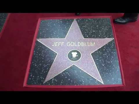 Jeff Goldblum Walk of Fame Ceremony