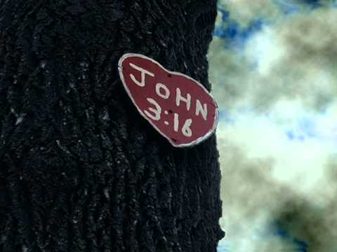 John 3:16 | What Does it Really Say?