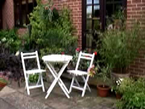 Hoggywart - Martin Fish from Garden News with top tips on how to get the most from your patio this summer.