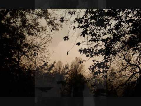 Peter Lipa - Sťahovaví vtáci