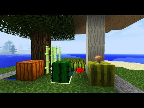 If Video Games Were In Minecraft 3 (ItsJerryAndHarry)