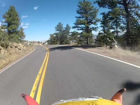Neulich beim Downhill…
