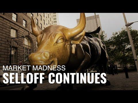 Market Madness: Run, Bull, Run