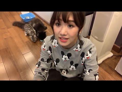 Hãy cùng tắm ~! 엘사(Elsa) 뱅갈 고양이 목욕시키기~! [하리원, Hariwon] - Thời lượng: 36:31.