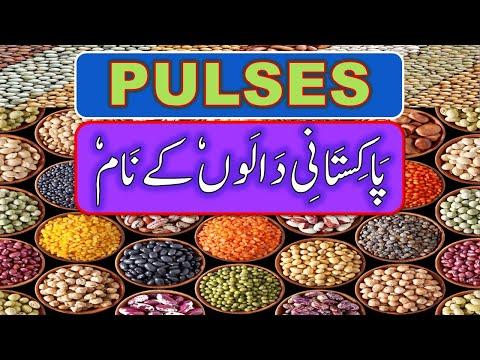 Pulses Name in Urdu & English, Dalain