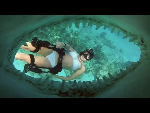 Director! - Shot 100% on the new Dive Housing & HD HERO2® camera from http://GoPro.com The Director's Cut dives deeper into the world of a bird and a fish, Roberta Manci...