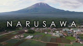 鳴沢村のキャベツ畑と富士山の空撮映像 /  Cabbage farm of Narusawa Village