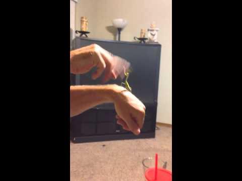 Man vs Mantis Slap Fight