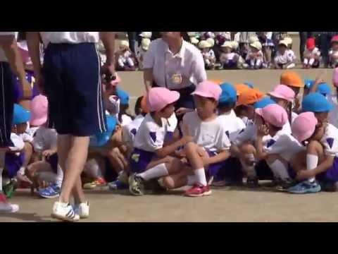 手賀の丘幼稚園・保育園 2016 運動会 年長組 リレー