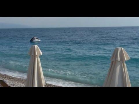 Δελφίνια στην παραλία της Ακράτας