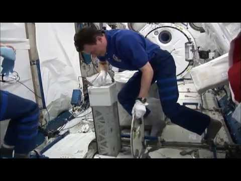 T-Cell Activation in Aging—Studying Immune Function in Microgravity