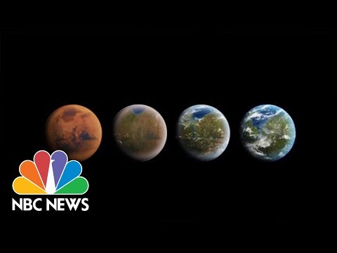 SpaceX Makes Announcement On Private Trip To The Moon | NBC News