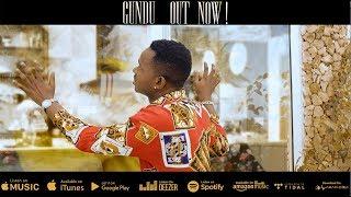 Video Lava Lava - Gundu (Official Music Video) MP3, 3GP, MP4, WEBM, AVI, FLV November 2018