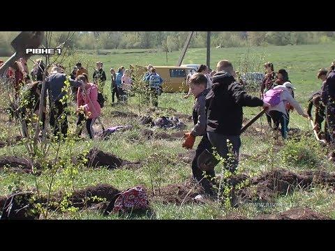 <a href='/Info/?id=90023' >На Рівненщині майже усе селище вийшло садити дерева [ВІДЕО]</a>