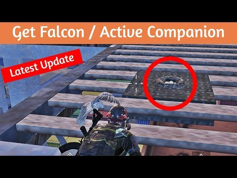 NEW UPDATE!! How To Get Falcon/Companion | PUBG MOBILE