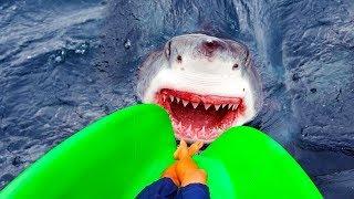 Video 7 Most Dangerous Water Slides That Will Blow Your Mind MP3, 3GP, MP4, WEBM, AVI, FLV Juli 2019