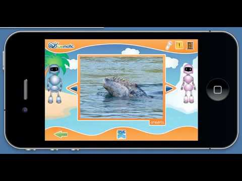 Video of Sea Animals + Numbers for kids