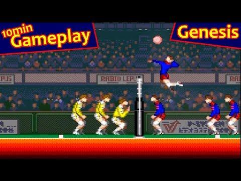 super volleyball genesis rom