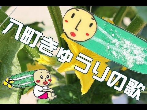 八町きゅうりの歌 / ジャスミン feat.高甫小学校