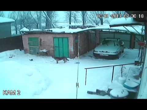 Asukas on ihmeissään kun kopin katto sortuu lumen painosta