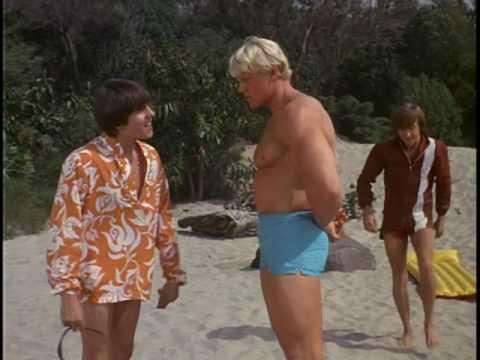 Дейв Дрейпер в сериале The Monkees 2