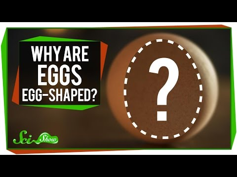Why Are Eggs … Egg-Shaped?