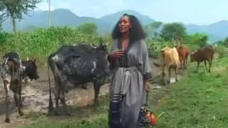 Zafu Kiros  New Tigrigna Tradtional Song   አሸንዳ