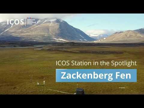 #ICOScapes - Zackenberg Fen (Greenland)